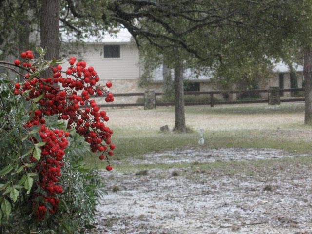 Snowice4_3